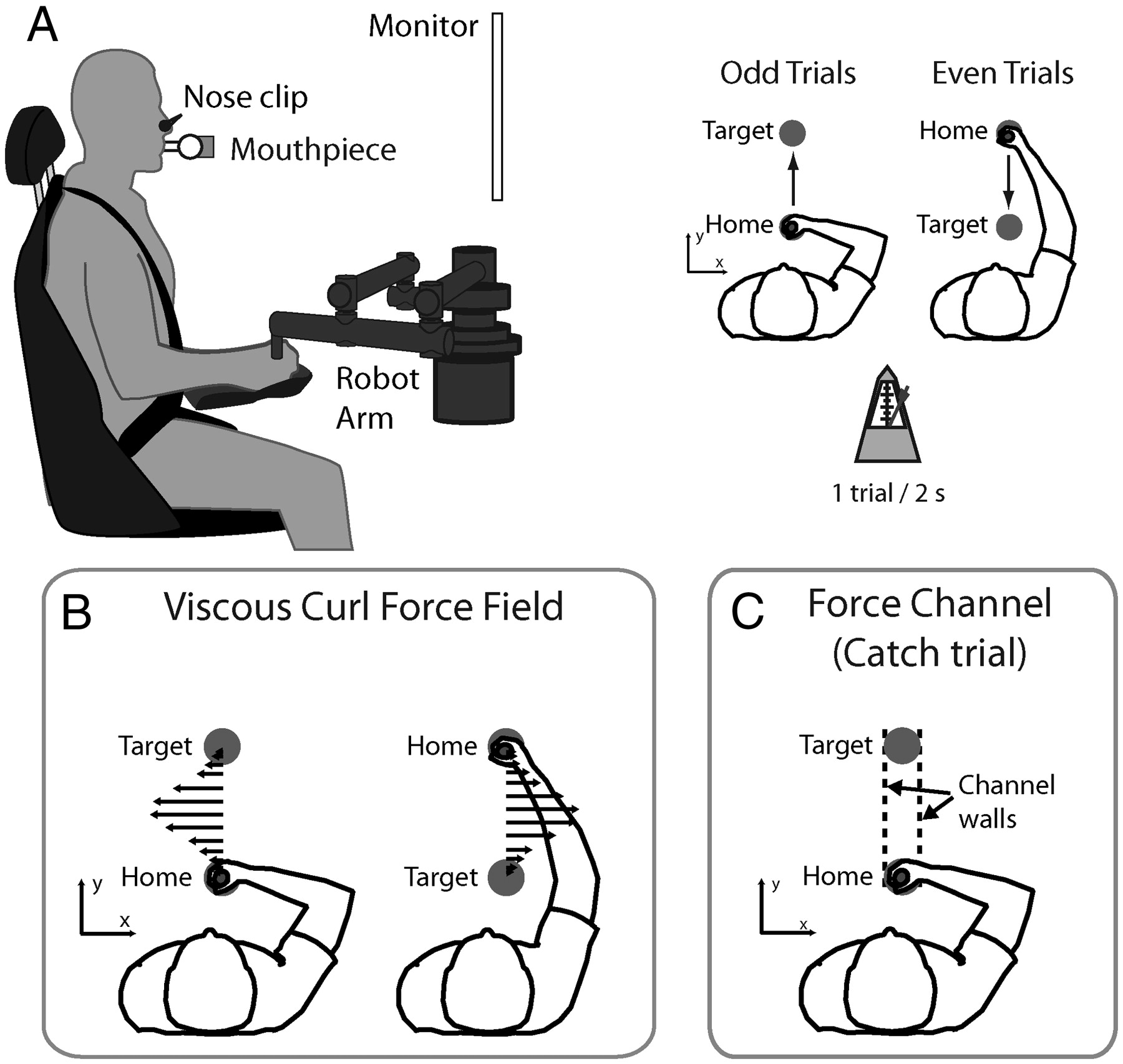 Reduction Of Metabolic Cost During Motor Learning Of Arm