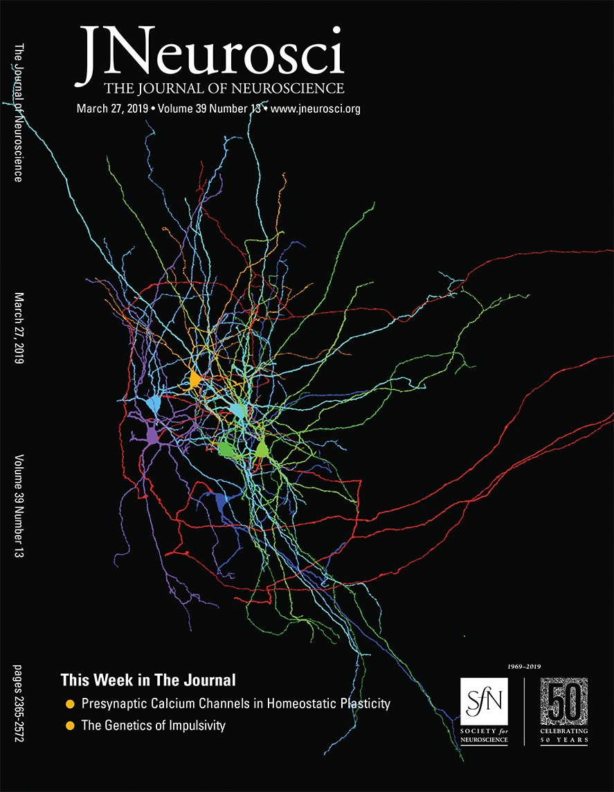 medium resolution of insensitivity of place cells to the value of spatial goals in a two choice flexible navigation task journal of neuroscience