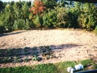 Garden inspiration for large spaces. | jnkdavis.com