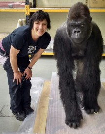 joanna_and_gorilla