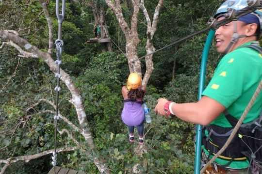 Zipline with Flight of the Gibbon