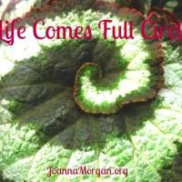 Life Comes Full Circle