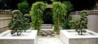 Zen Garden - Jo Alderson Phillips