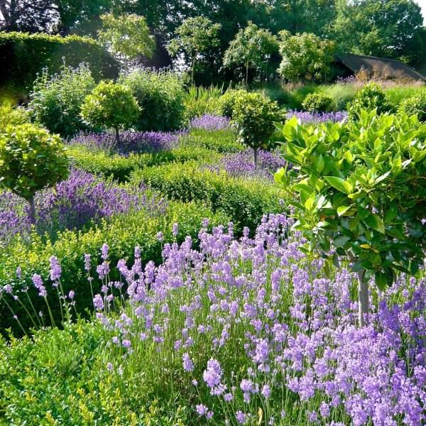 large gardens estates - jo alderson