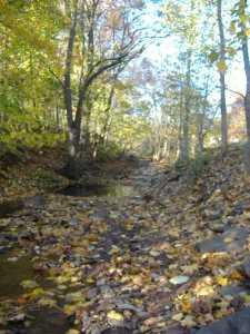 creekpath