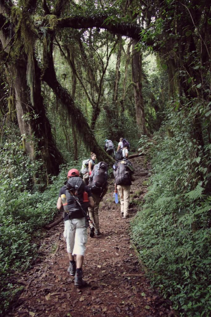 joão-cajuda-tanzaniaclimbing-kilimanjaro15