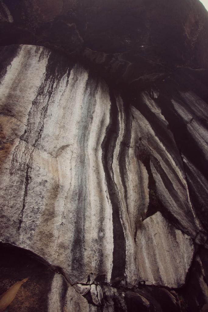 joão-cajuda-tanzaniaclimbing-kilimanjaro51