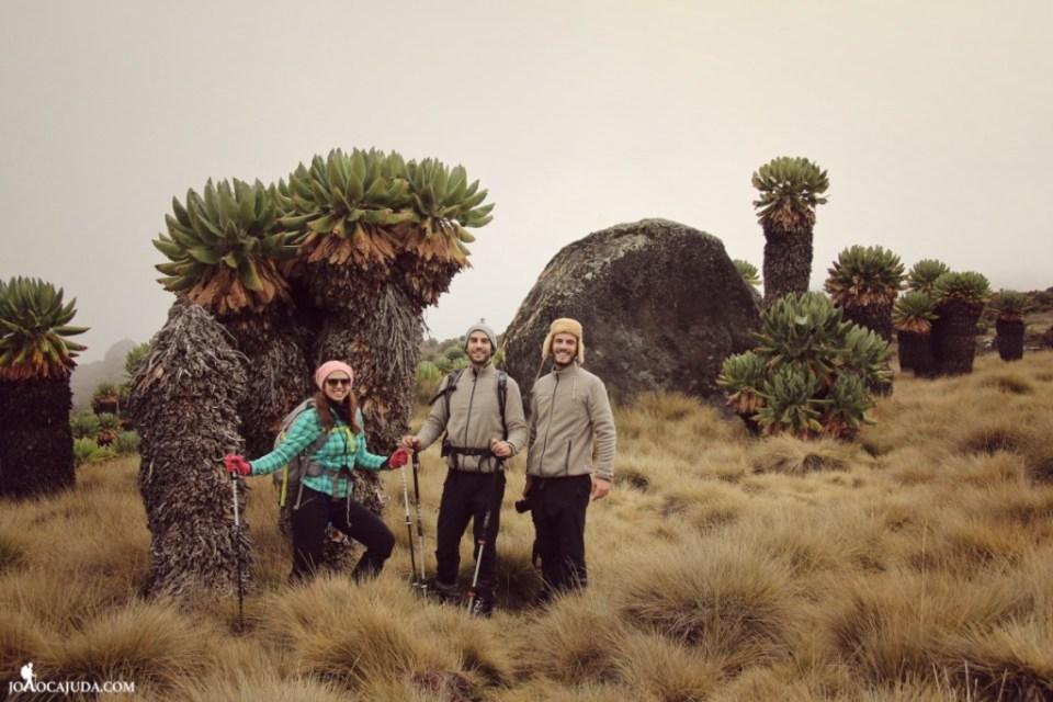 joão-cajuda-tanzaniaclimbing-kilimanjaro61- www.joaocajuda.com