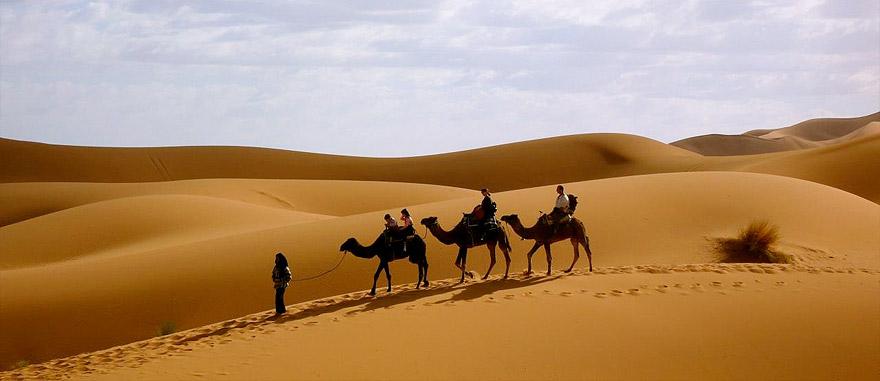 Camel trekking in Merzouga Dunes, Morocco