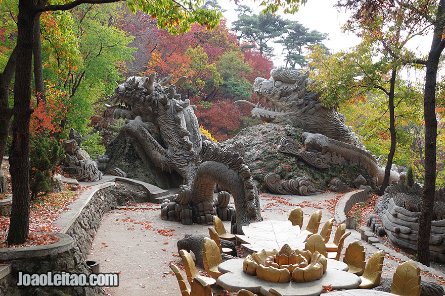 The park in the Dragon Mountain has a huge dragon sculpted in the pic-nic area.