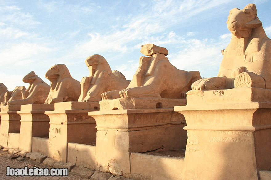 Row of goat sphinxes at the temple of Karnak