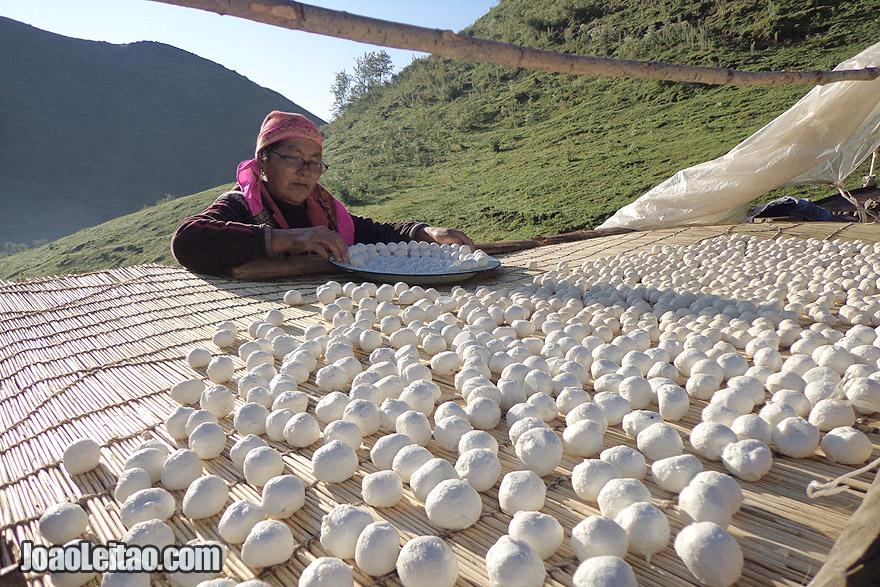 Senhora a preparar bolas de queijo qurut