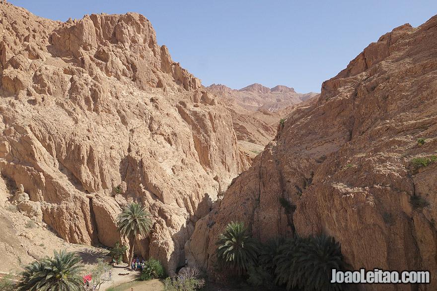 Chebika Mountain Oasis in Tunisia
