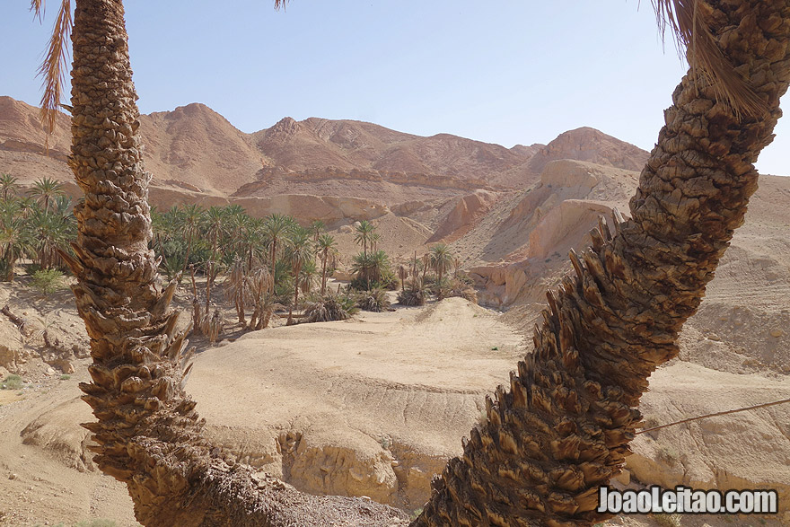 Visit Tunisia