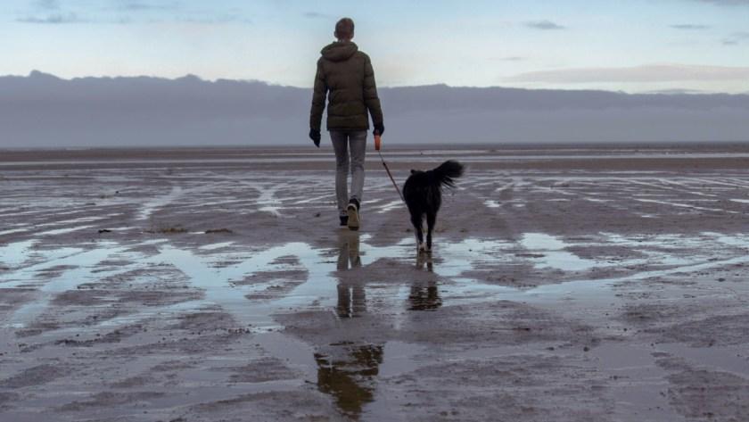 Homem passeia cão na praia - fotografia