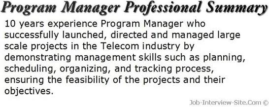 brief resume summary examples