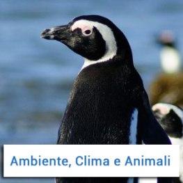 causa-ambiente-clima-e-animali