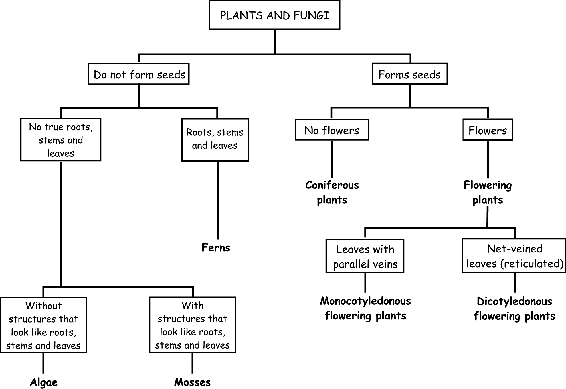 Natural Sciences To Classify Plants According To Their