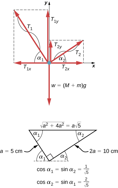 Conceptual questions, Conditions for static equilibrium