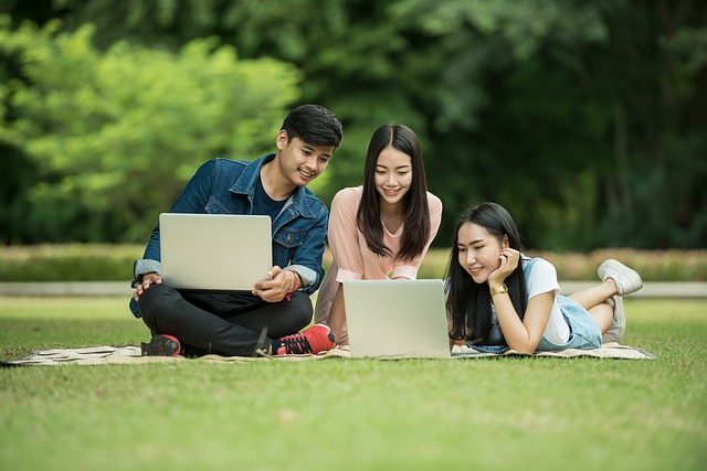 Three students in park studying in laptop about best diploma courses