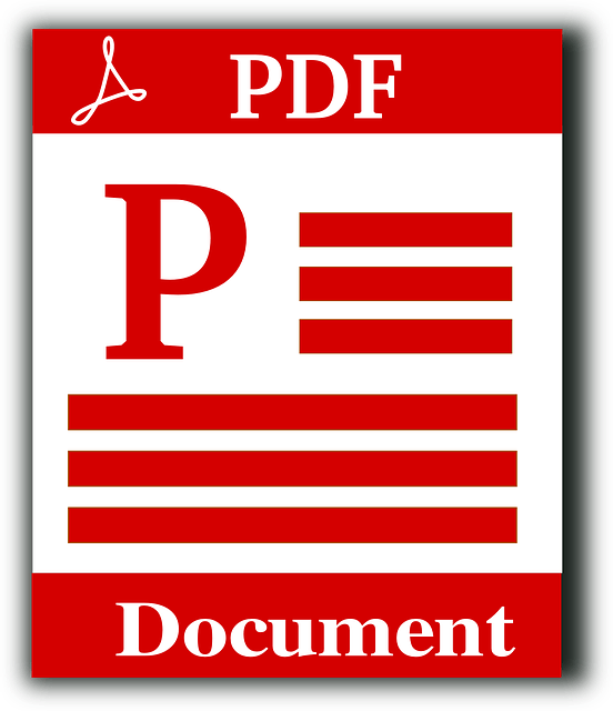 PDF Document Format