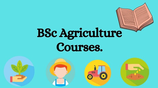 Light blue baground with black text words BSc Agriculture Courses.