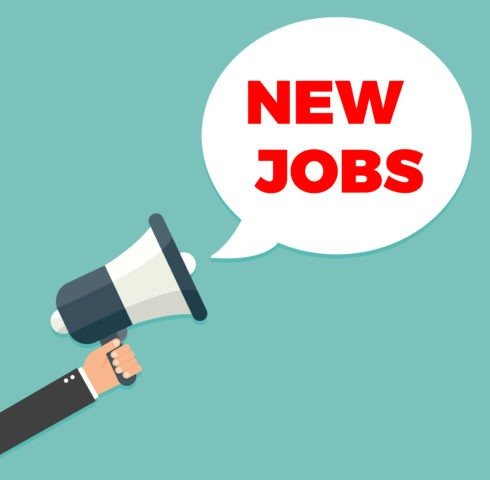 Lidl to create 600 new jobs  Jobsie