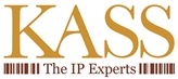 Intellectual Property (IP) Executive/Lawyer/Consultant