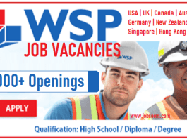 WSP Careers and Job Vacancy Openings Worldwide