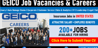 GEICO Careers and Staff Recruitment Job Vacancy Opening and Employment Opportunities