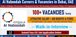 Al Naboodah Careers, Employment and Walk-in-Interview Openings in Dubai UAE, Apply for Latest Job Vacancies and Recruitment Opportunities
