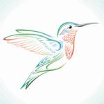 Hummingbird Web Solutions