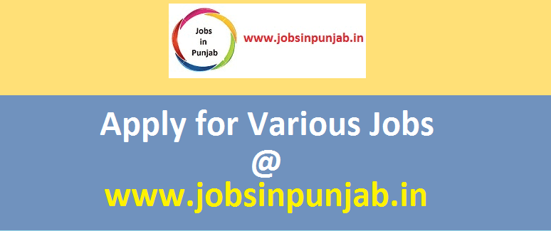 new jobsinpunjab photo