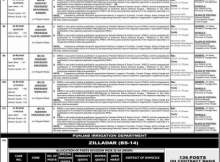 PPSC Zilladar Jobs 2020 Irrigation Department Punjab