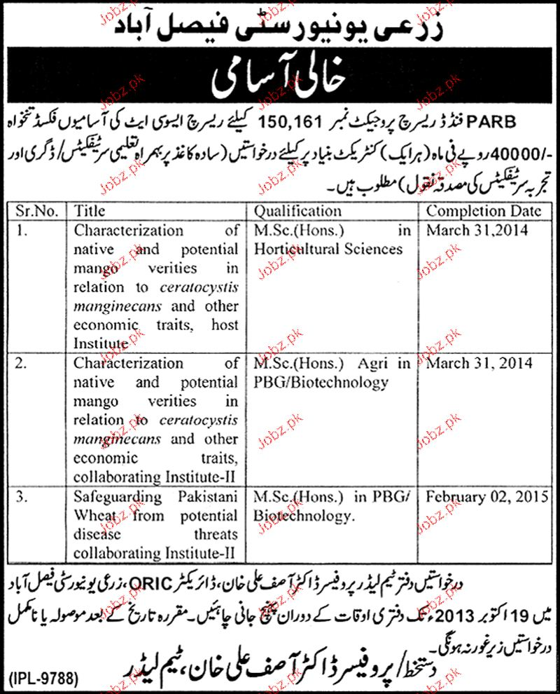 Research Associates Jobs in Agriculture University