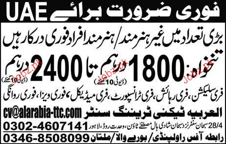 Technical and Non Technical Staff Job Opportunity 2019 Job