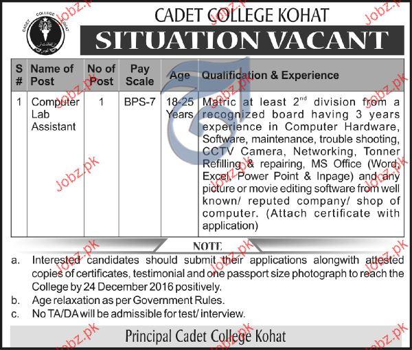 Computer Lab Assistants Job in Cadet College 2019 Job