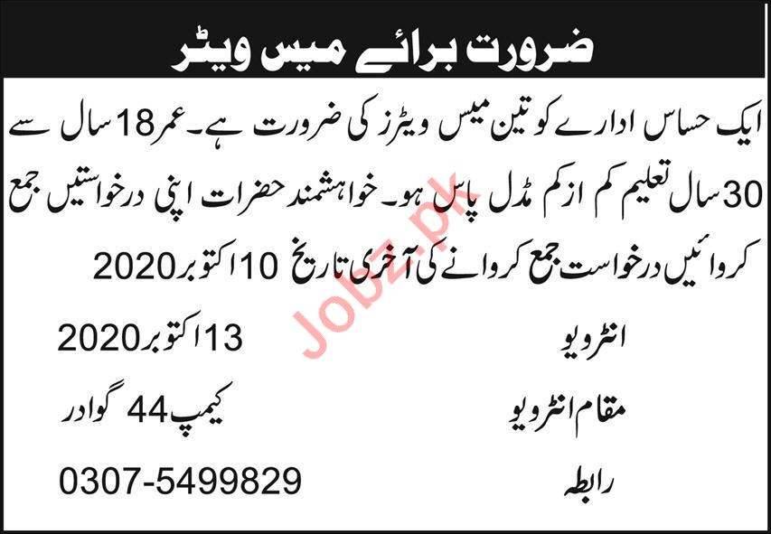 Public Sector Organization Gwadar Jobs 2020 for Waiter
