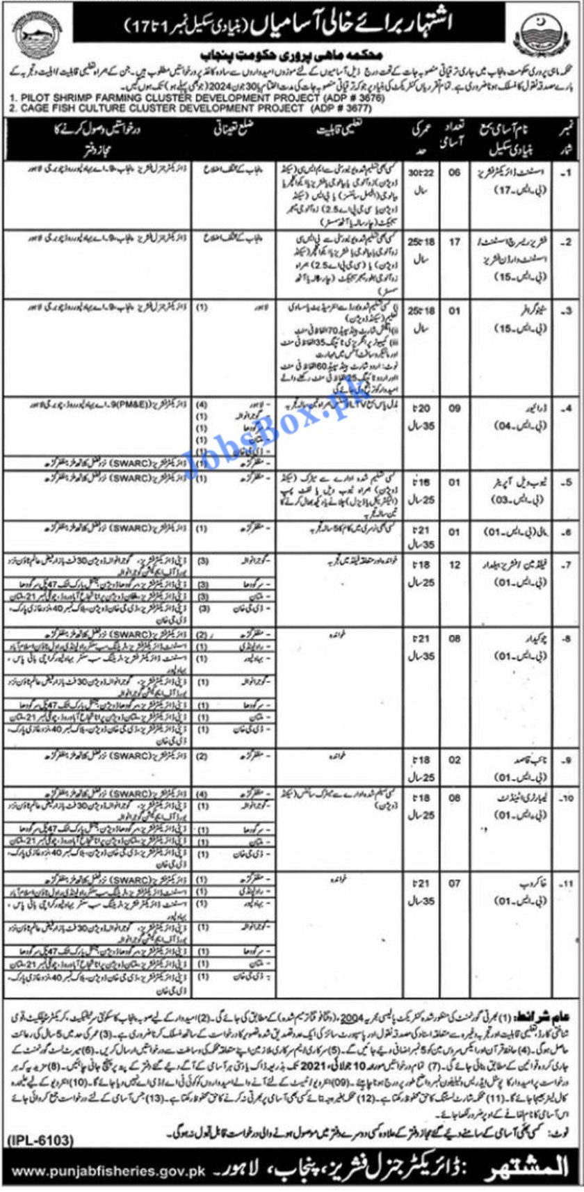 Fisheries Department Punjab Latest Jobs 2021 – BPS-01 to BPS-17 Recruitment