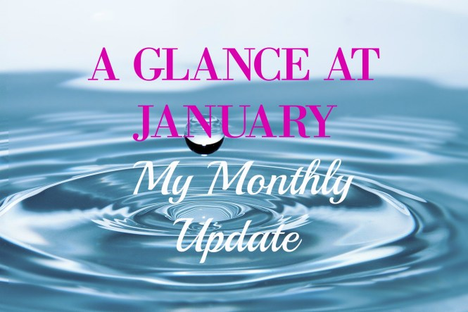a glance at january my monthly update
