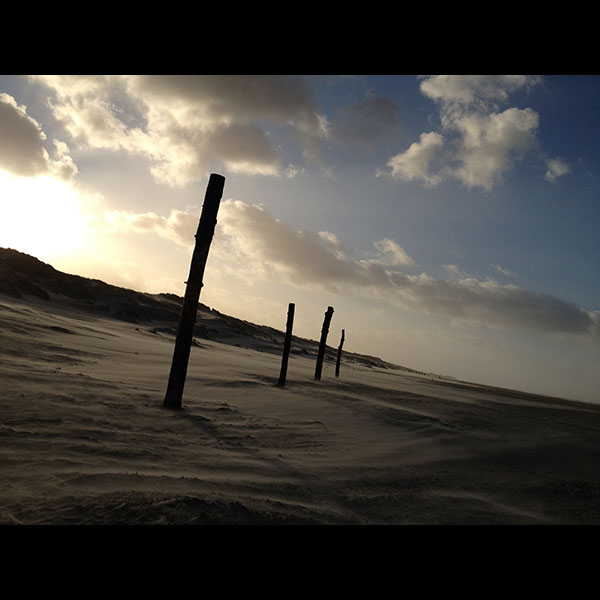 Terschelling-poles-on-the-beach