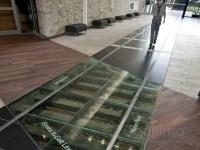 waterloo flooring   TheFloors.Co