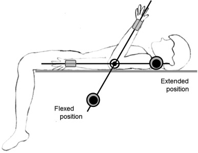 Flexor and extensor muscle tone evaluated using the