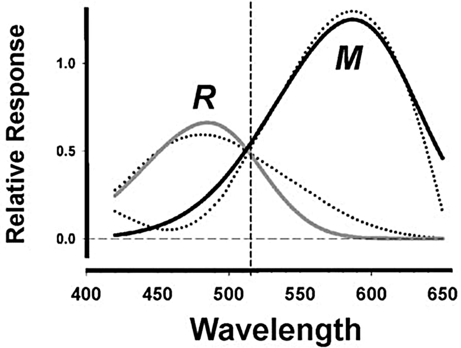 Supplemental Materials For Thin Film Optical Notch Filter
