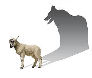 Afbeeldingsresultaat voor wolf in schaapskleren