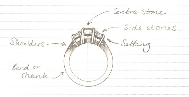 ring anatomy sketch
