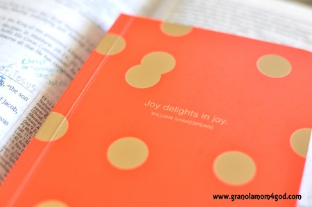 joy journal write the word