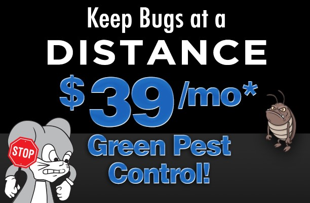 green pest control discount