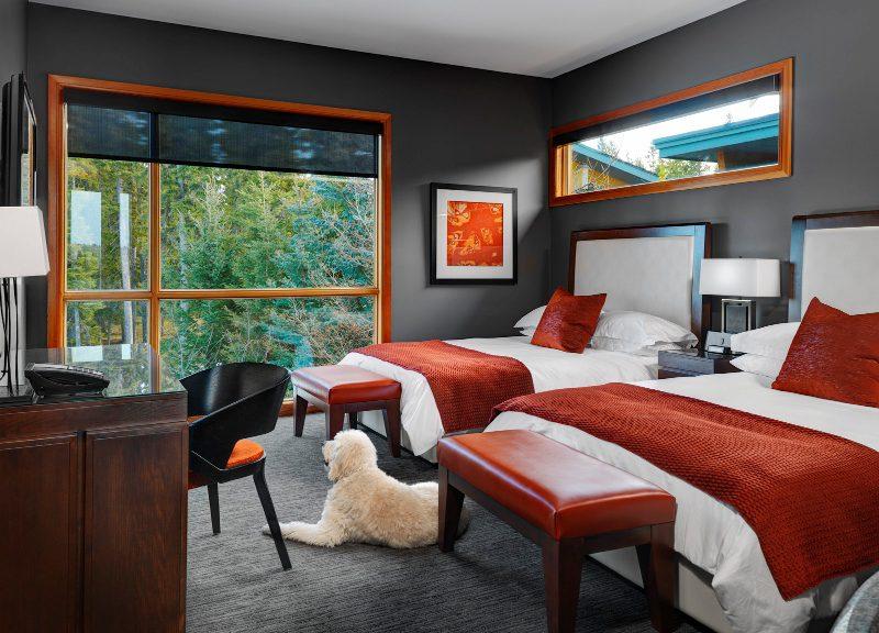 Azuridge guest room