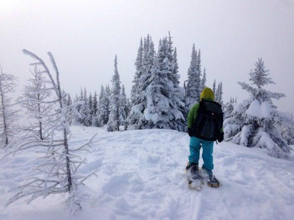 Banff snowshoe: 10 Surprising things about snowshoeing at Sunshine Village